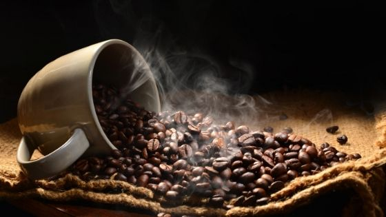 Best Regions to Import Coffee From Brazil